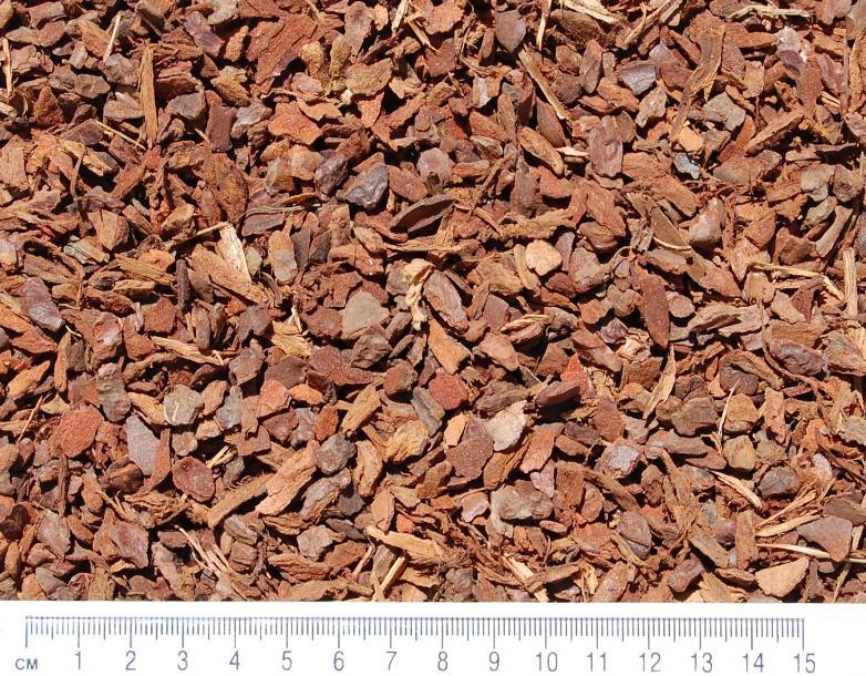 propagating-bark