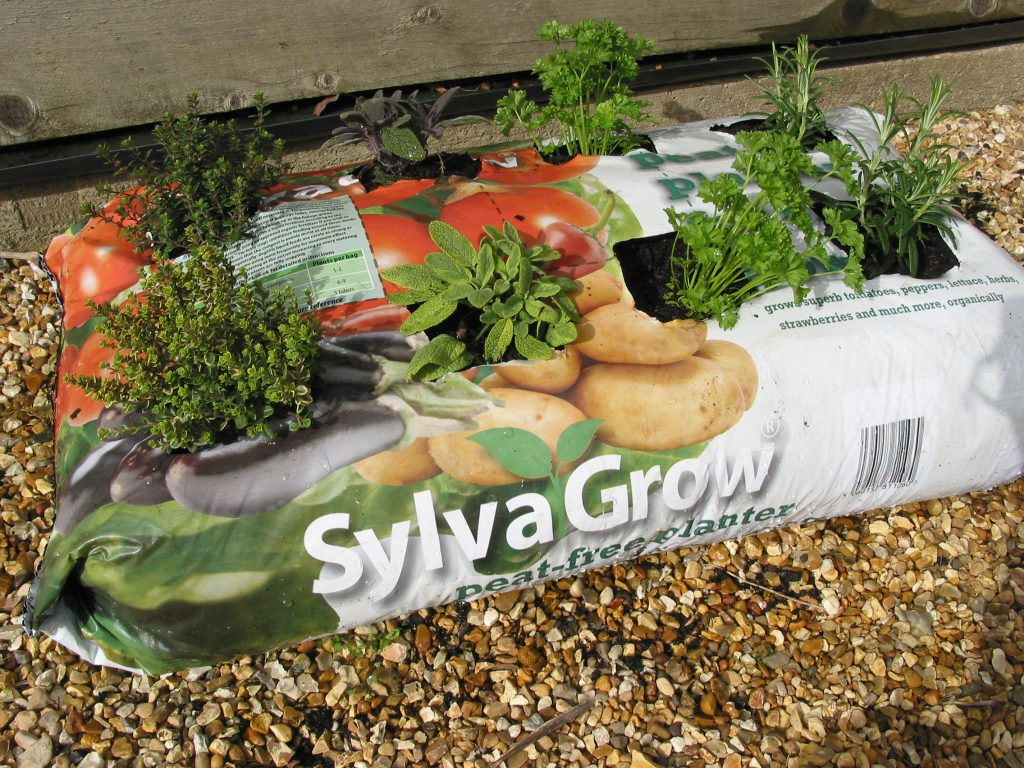 SylvaGrow planter